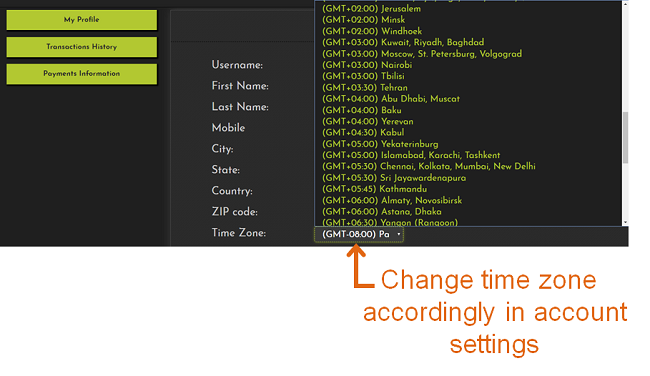 FrugalTesting select timezone feature